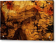 Orange Rock. Acrylic Print by Isaac Silman