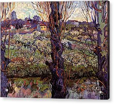 Orchard In Blossom With View Of Arles Acrylic Print by Vincent Van Gogh