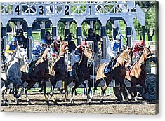 Out Of The Gate Acrylic Print by Clarence Alford