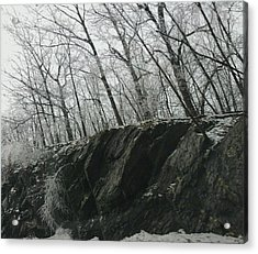 Acrylic Print featuring the photograph Out Of The Rocks by Ellen Levinson