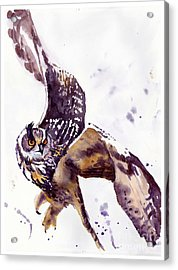 Owl Watercolor Acrylic Print