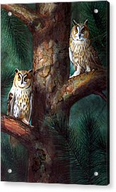 Owls In Moonlight Acrylic Print by Frank Wilson