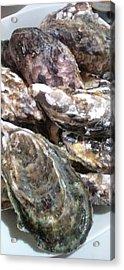 Oyster  Acrylic Print