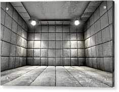 Padded Cell Dirty Acrylic Print by Allan Swart