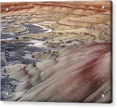 Painted Hills Acrylic Print by Leland D Howard