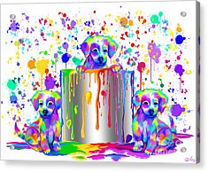 Painted Puppies  Acrylic Print by Nick Gustafson