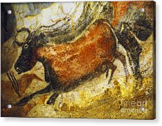 Paleolithic Cave Painting Acrylic Print by Ruth Hofshi