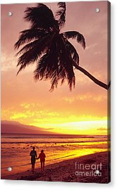 Palm Over The Beach Acrylic Print by Ron Dahlquist - Printscapes