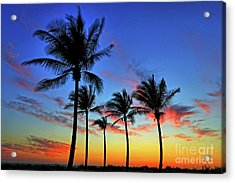 Acrylic Print featuring the photograph Palm Tree Skies by Scott Mahon