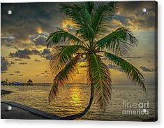 Palm Tree Sunrise Acrylic Print