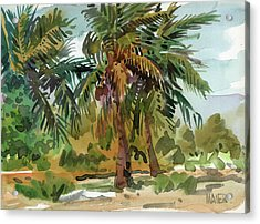 Palms In Key West Acrylic Print by Donald Maier