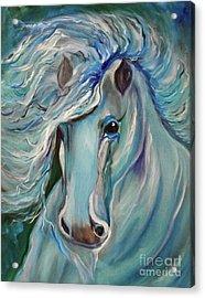 Palomino Jenny Lee Discount Acrylic Print