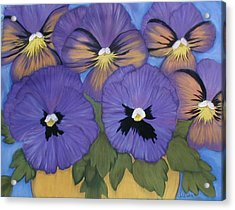 Pansy Power Acrylic Print by Norma Tolliver