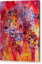 Panther Acrylic Print by Anne Weirich
