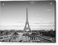 Paris Eiffel Tower Monochrome Acrylic Print by Melanie Viola