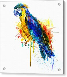 Parrot Watercolor  Acrylic Print by Marian Voicu