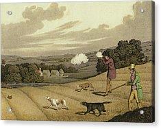 Partridge Shooting Acrylic Print by Henry Thomas Alken