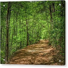 Path Less Travelled - Impressionist Acrylic Print