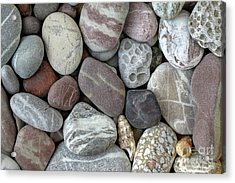 Pebbles In Earth Colors - Stone Pattern Acrylic Print by Michal Boubin