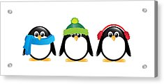 Penguins Isolated Acrylic Print by Jane Rix