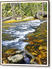Pennsylvania Mountain Stream Acrylic Print