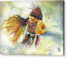 Phyco Fishy Acrylic Print