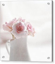Pink Roses Acrylic Print by Jill Ferry