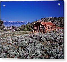 Pioneer Cabin Acrylic Print by Leland D Howard