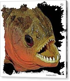 Piranha Acrylic Print by Larry Linton
