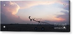 Pivot Irrigation And Sunset Acrylic Print