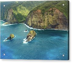 Pololu Point Acrylic Print