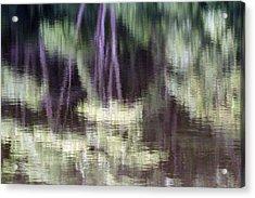 Pond Reflect Acrylic Print by Karol Livote