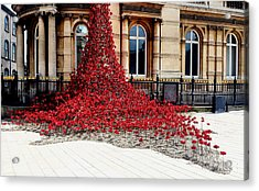 Poppies - City Of Culture 2017, Hull Acrylic Print