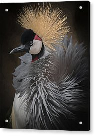 Acrylic Print featuring the digital art Portrait Of A Crowned Crane by Ernie Echols