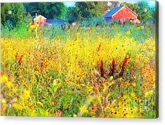 Prairie Farm House Acrylic Print