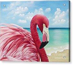 Pretty In Pink Acrylic Print