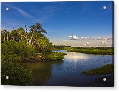 Protected Wetland Acrylic Print by Marvin Spates