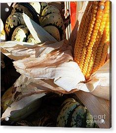 Pumpkin And Corn Acrylic Print