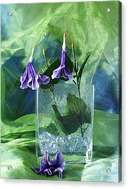 Purple Flowers Acrylic Print by Florene Welebny