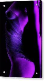 Purple Love Acrylic Print by Naman Imagery