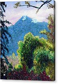 Rain Forrest Mountain Acrylic Print by Stan Hamilton