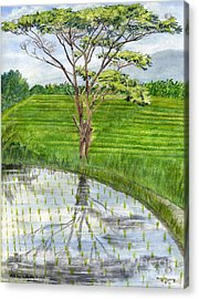 Acrylic Print featuring the painting Rain Tree On The Way To Ubud Bali Indonesia by Melly Terpening