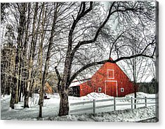 Red And White Acrylic Print by Betsy Zimmerli