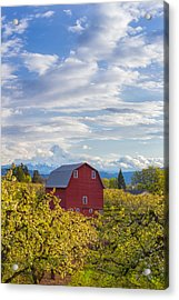 Acrylic Print featuring the photograph Red Barn And Mt Hood by Patricia Davidson
