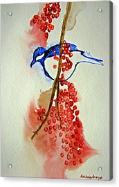 Red Berry Blue Bird Acrylic Print by Patricia Arroyo