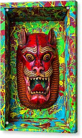 Red Cat Mask Acrylic Print by Garry Gay