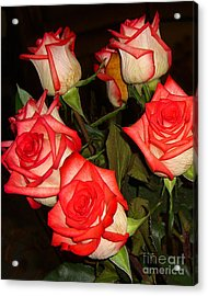 Red Fringed Roses Acrylic Print by Merton Allen