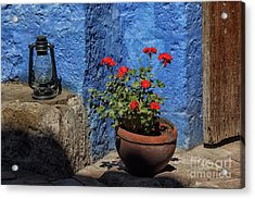 Acrylic Print featuring the photograph Red Geranium Near A Blue Wall by Patricia Hofmeester
