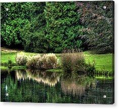 Reflected Acrylic Print by Gouzel -