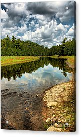 Reflection Of Nature Acrylic Print by Joe  Ng